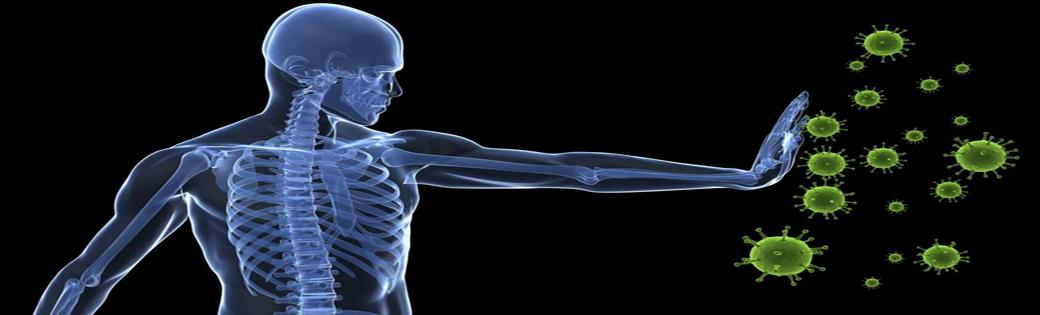 Nurturing the immune system